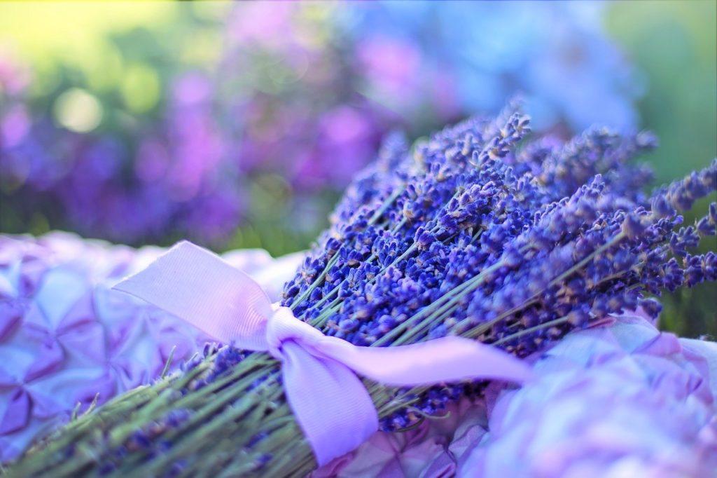 lavender-flower-meaning